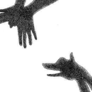 Le chien qui lache la proie pour l'ombre